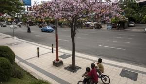 Grill pohon Pedestrian Tanjung Perak